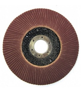 Diskas šlifavimui lapelinis 125x22mm PROLINE